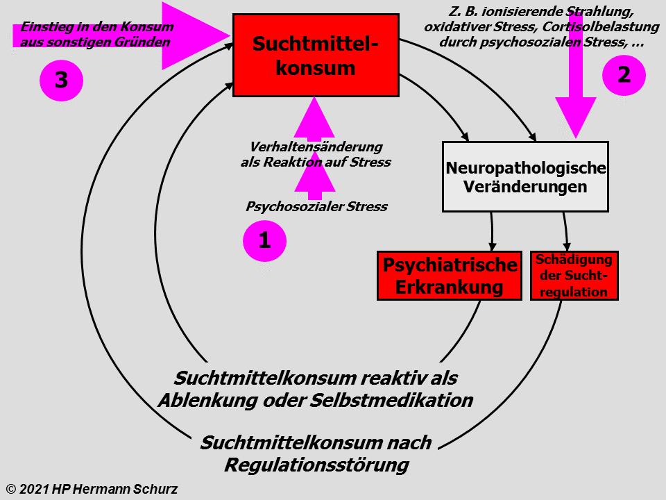 Multikausale Theorie (Teil B)